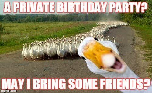 A private birthday party? May I bring some friends?